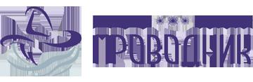 Проводник - центр системного и бизнес моделирования